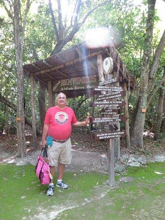 Jardín botánico Dr. Alfredo Barrera Marín: The paths are clearly marked.