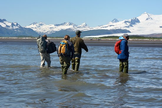 Sea Hawk Air: Wading from the float plane to the shore of Katmai National Park