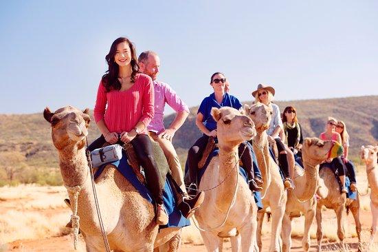 Alice Springs, Australië: Pyndan camel ride