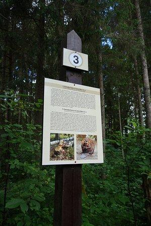 Cirulisi Nature Trail照片