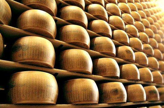 Tour in Modena - The Way of Taste