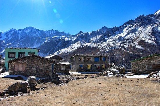 Nepal Trekkers: #Langtang_tek