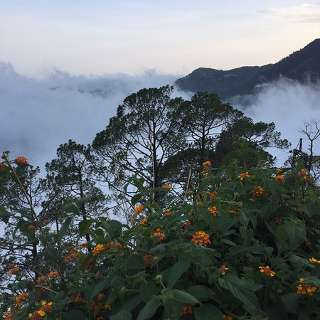 Kampland Nainital照片