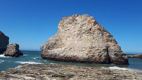 Shark Fin Cove照片