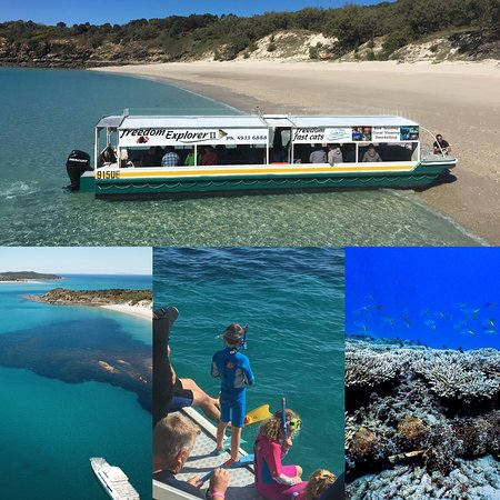 Freedom fast cats open 7 days. Transfer & cruises as well. Crew are happy to help. Info@freedomf