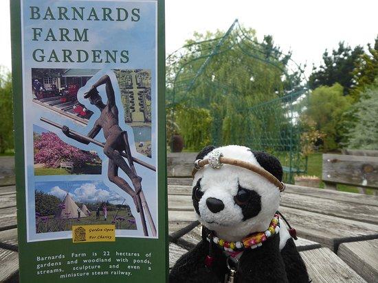 Barnards Farm Gardens张图片