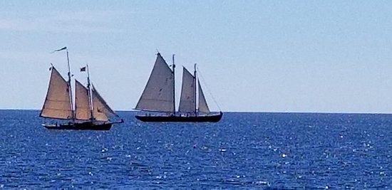 Casco Bay照片