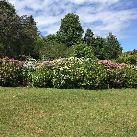 Bilde fra Plas Newydd House and Garden
