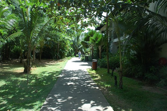 The H Resort Beau Vallon Beach: Going from the suite to the reception