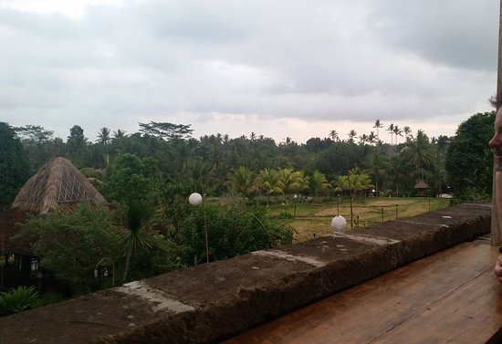Mr. Wayan, Balinese Cuisine: view from balcony