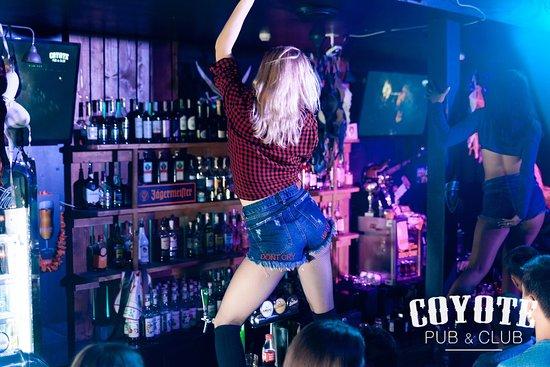 Coyote Pub&Club: COYOTE Club BREST