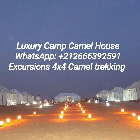 Camels House: khhv