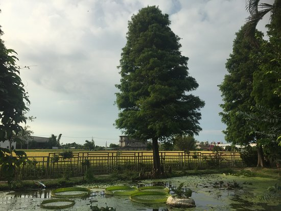 Lianheyuan Farm - Straw Museum