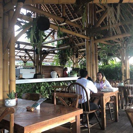 Shelter Bali照片