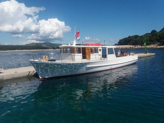 Delfina Excursions - Hvar