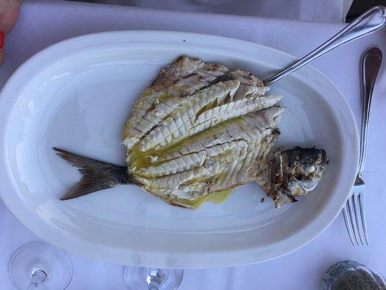 Saga Fish Restaurant: Frischer Fisch