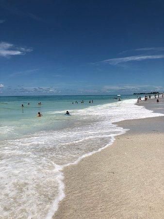 Beach Picture Of Manatee Public