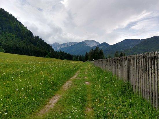 Unterbergen, Oostenrijk: Beautiful walking paths!