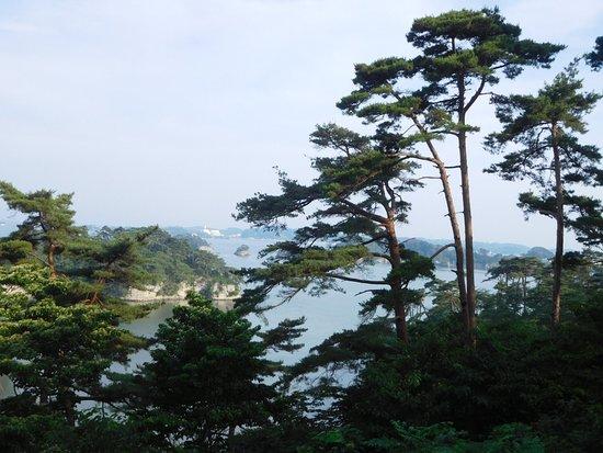 Zuihogaoka Hill