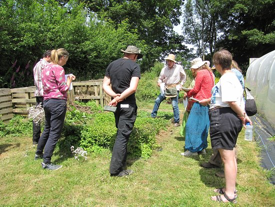 Forest Garden Wales: Jake Rayson talking about ground cover plants and propagation with a group.