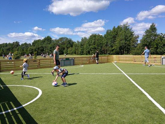 Foldvik Familypark: Toro, interaktiv ballvegg