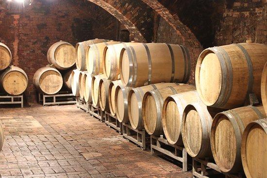 Piemont, Itálie: Pirvate Cellar Tours