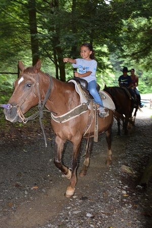 Smoky Mountain Riding Stables: Headed out