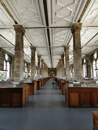 自然史博物馆照片