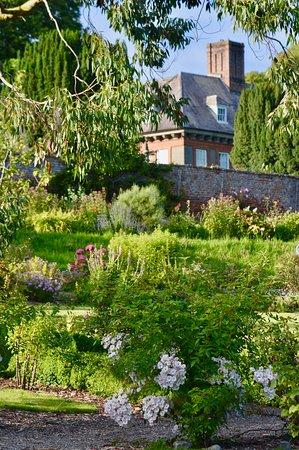 Beaulieu House and Garden: Beaulieu Garden