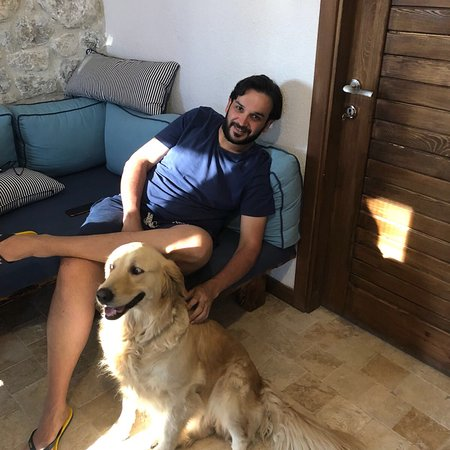 Akcapınar, Турция: Sevimli misafir pupa