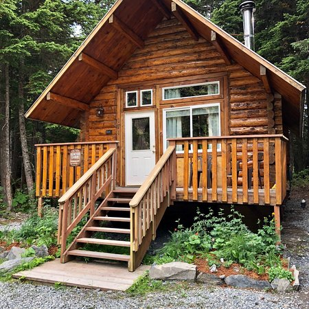 Adorable cabin in the woods