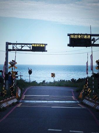 Sakura Ki Road