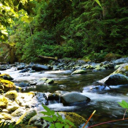 Wildcoast Adventures: photo1.jpg