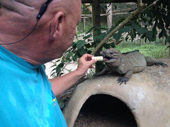 La Romana Province, สาธารณรัฐโดมินิกัน: in the end an animal...