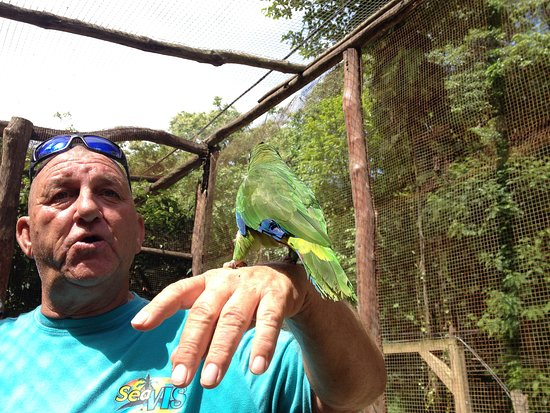 La Romana Province, สาธารณรัฐโดมินิกัน: and a bird ...