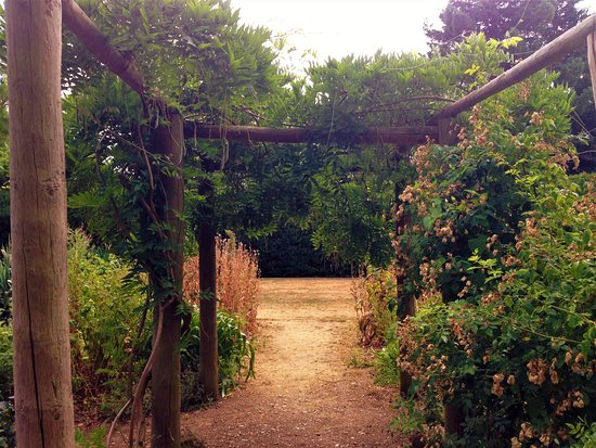 Myddelton House Gardens: Beautiful trees, plants and scenery at Myddelton House, Enfield.