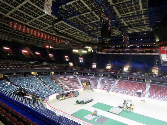 Empty Inside Picture Of The Scotiabank Saddledome