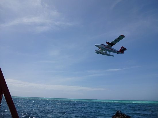 Cocoon Maldives: Returning from snorkelling trip to see seaplane taking off
