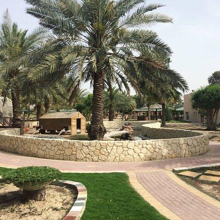 Zallaq, Bahrain: photo3.jpg