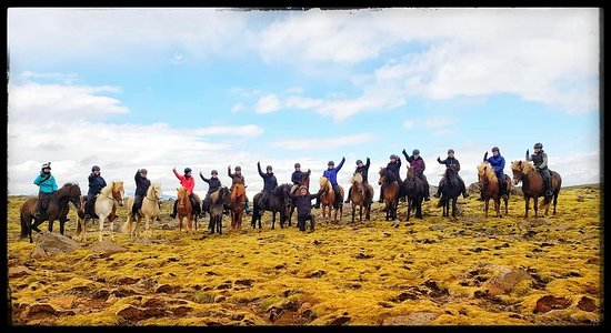 Riding Tours South Iceland: Die Gruppe beim Canyonritt