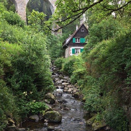 Breitnau, Deutschland: photo3.jpg