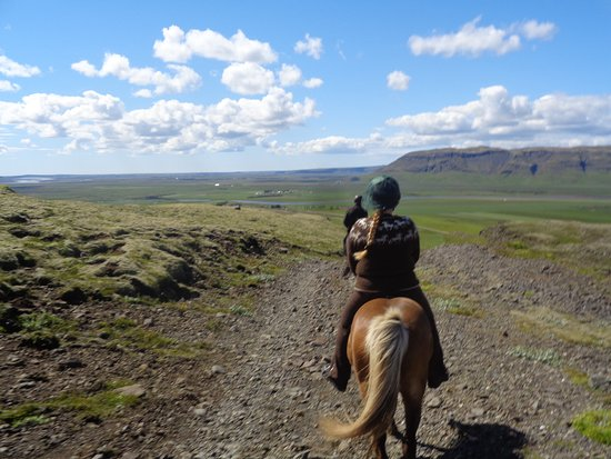 Riding Tours South Iceland: Sommer in Island :-)