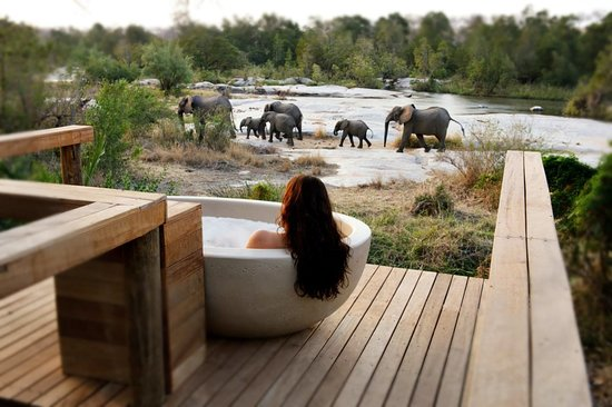 Camps Bay, Sudáfrica: Londolozi Game Reserve - a marriage of luxury and nature
