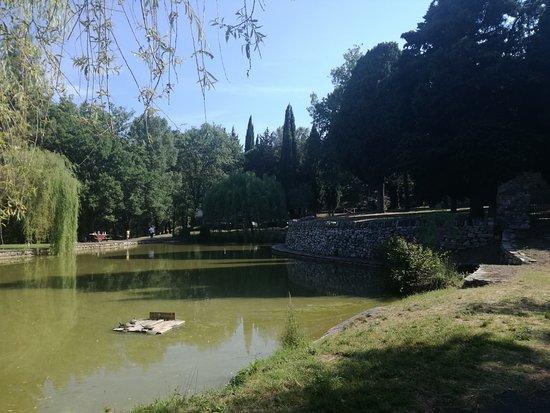 Lucinasco, Italy: Laghetto e tartarughe