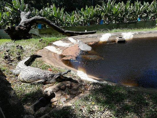Southbroom, Sydafrika: Great experience