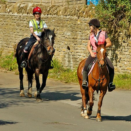 Pevlings Farm Riding & Livery Stables