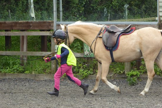 Templecombe, UK: Having fun with the ponies on our childrens 'Fun Day'