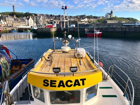 Macduff, UK: Off we go for an amazing boat trip with Skipper Alan!