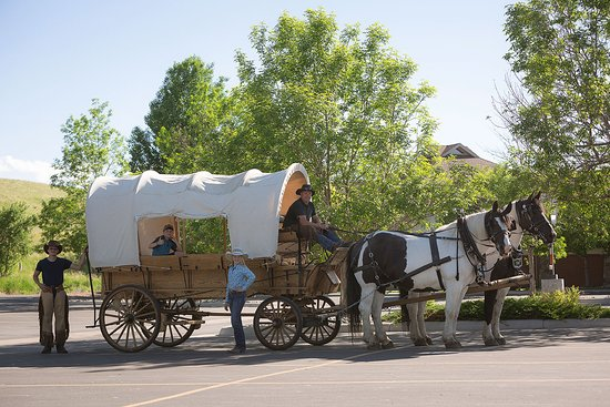 3G Wagon Rides