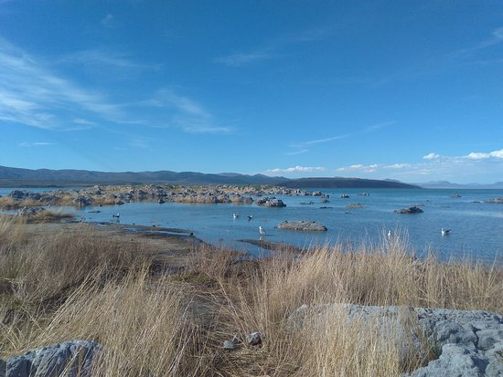 Mono Lake Vista Point照片